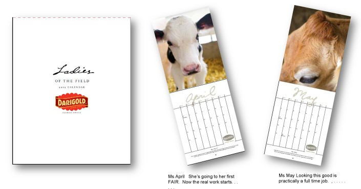 direct-mail-calendar-exmaple