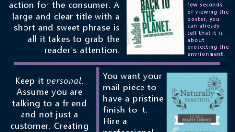Infographic depicting 'What the Perfect Mailshot Looks Like'